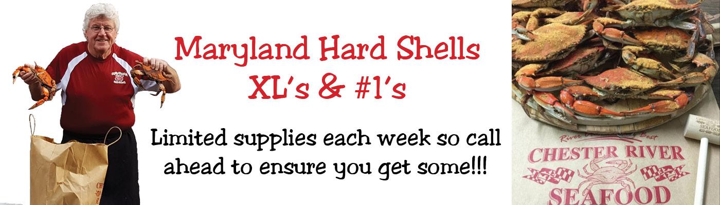 maryland hard shell crabs